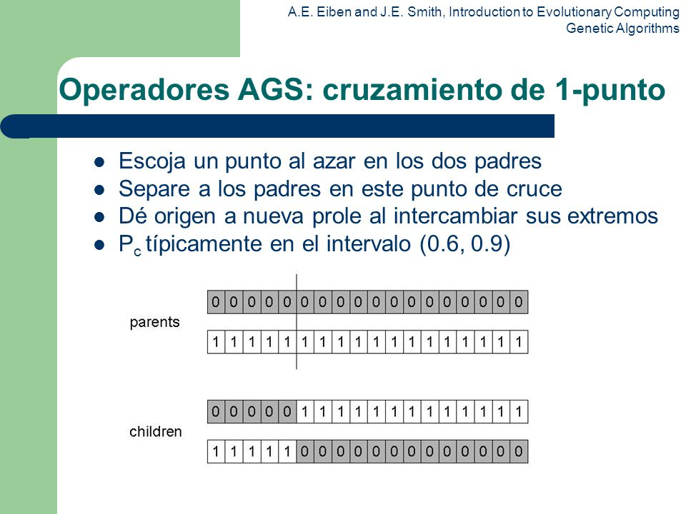 Operadores AGS: cruzamiento de 1-punto