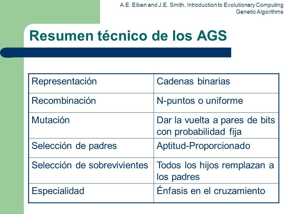 Resumen técnico de los AGS