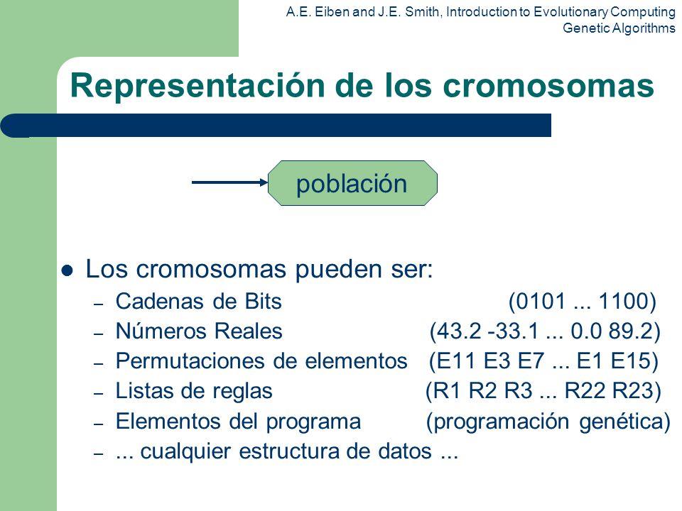 Representación de los cromosomas