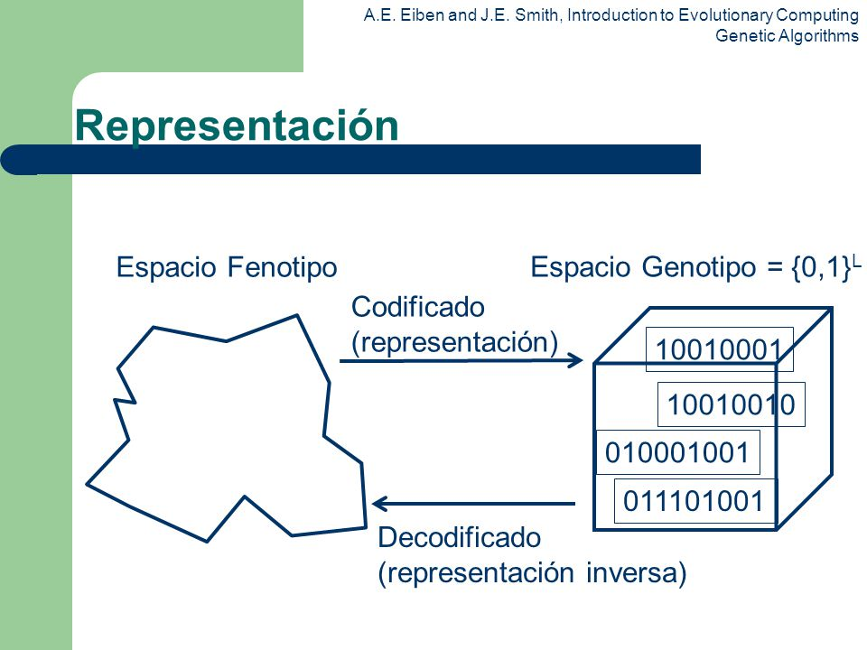 Representación Espacio Fenotipo Espacio Genotipo = {0,1}L Codificado