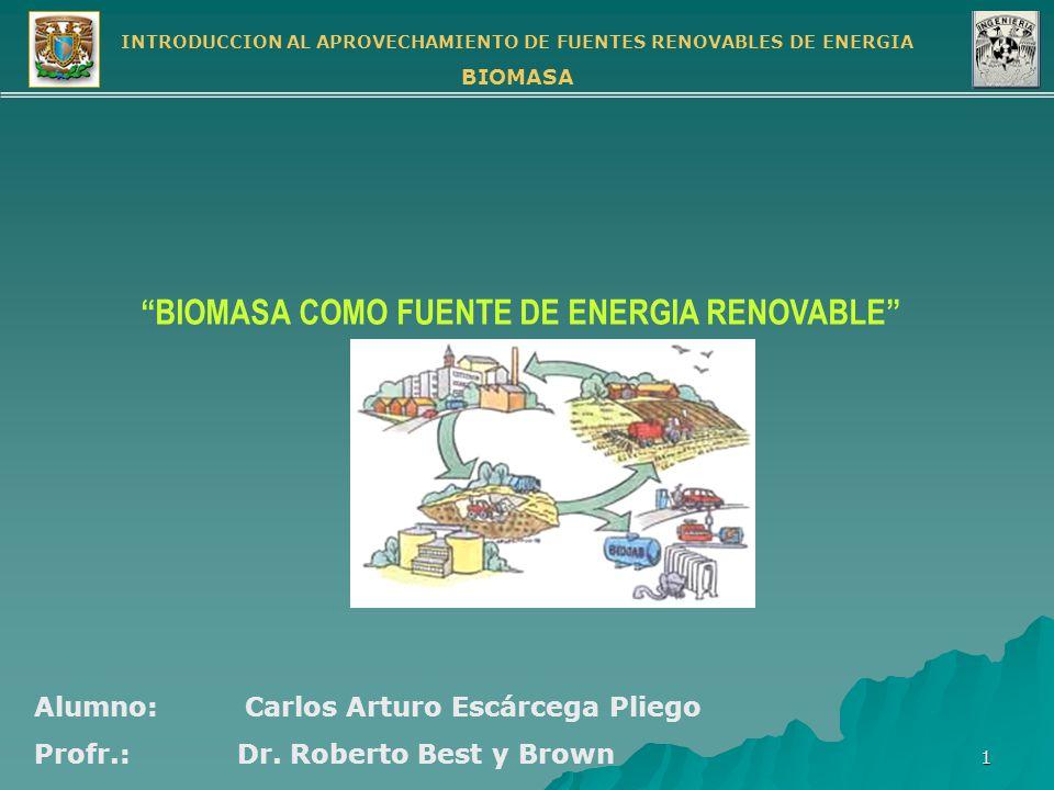 BIOMASA COMO FUENTE DE ENERGIA RENOVABLE