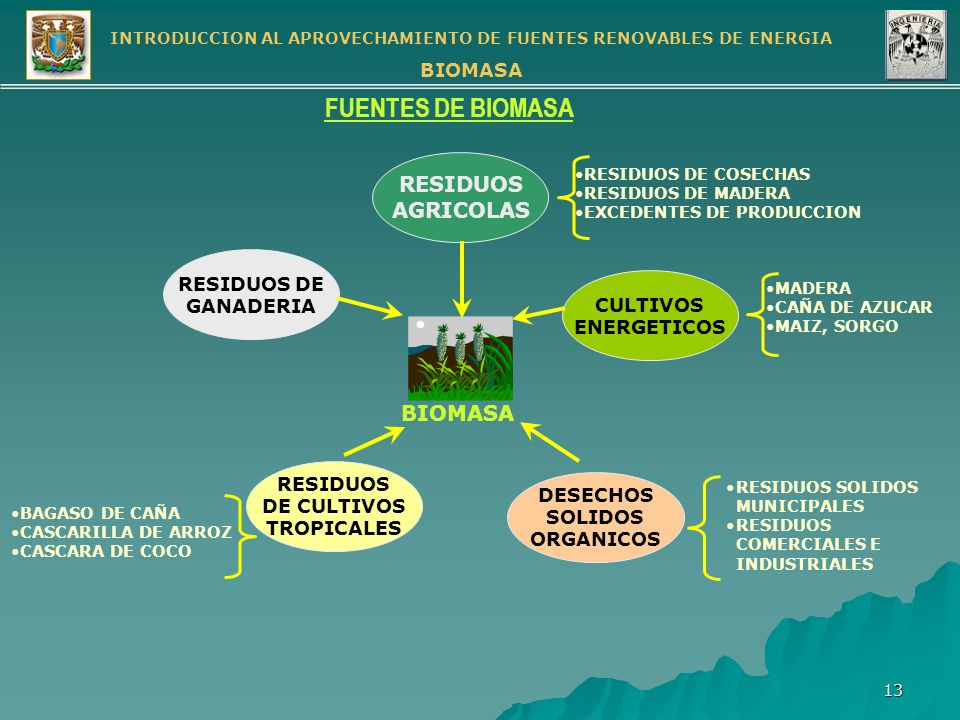 FUENTES DE BIOMASA RESIDUOS AGRICOLAS BIOMASA RESIDUOS DE GANADERIA