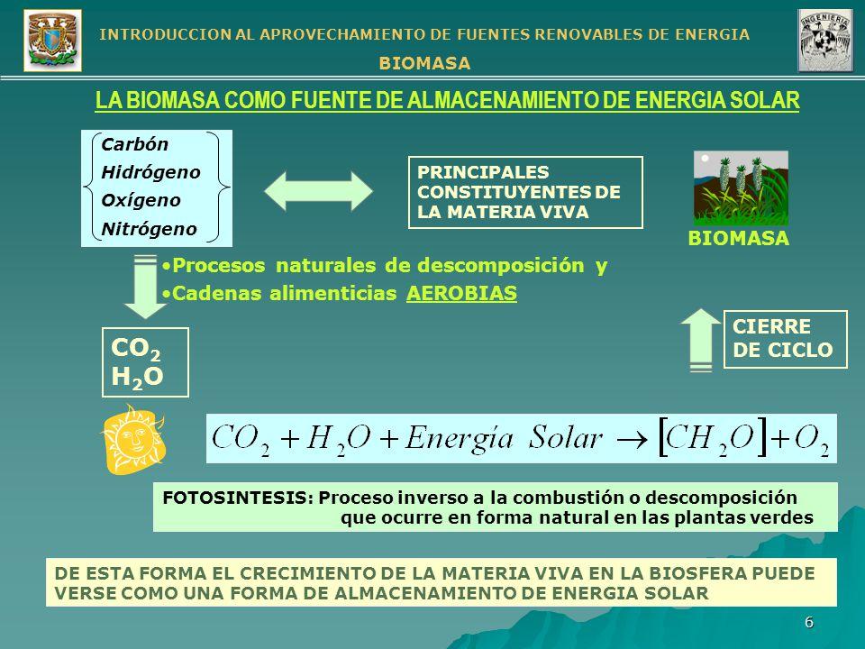 LA BIOMASA COMO FUENTE DE ALMACENAMIENTO DE ENERGIA SOLAR
