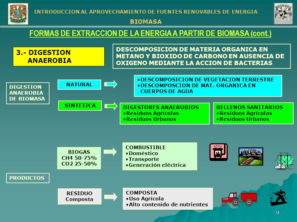 FORMAS DE EXTRACCION DE LA ENERGIA A PARTIR DE BIOMASA (cont.)