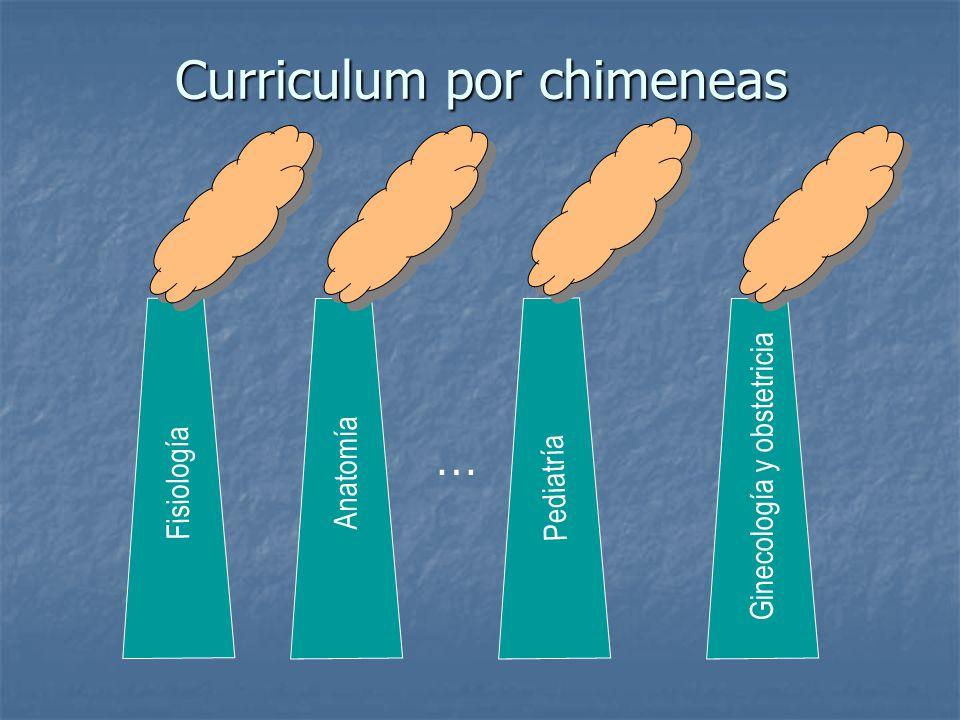 Curriculum por chimeneas