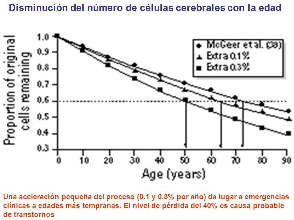 Disminución del número de células cerebrales con la edad