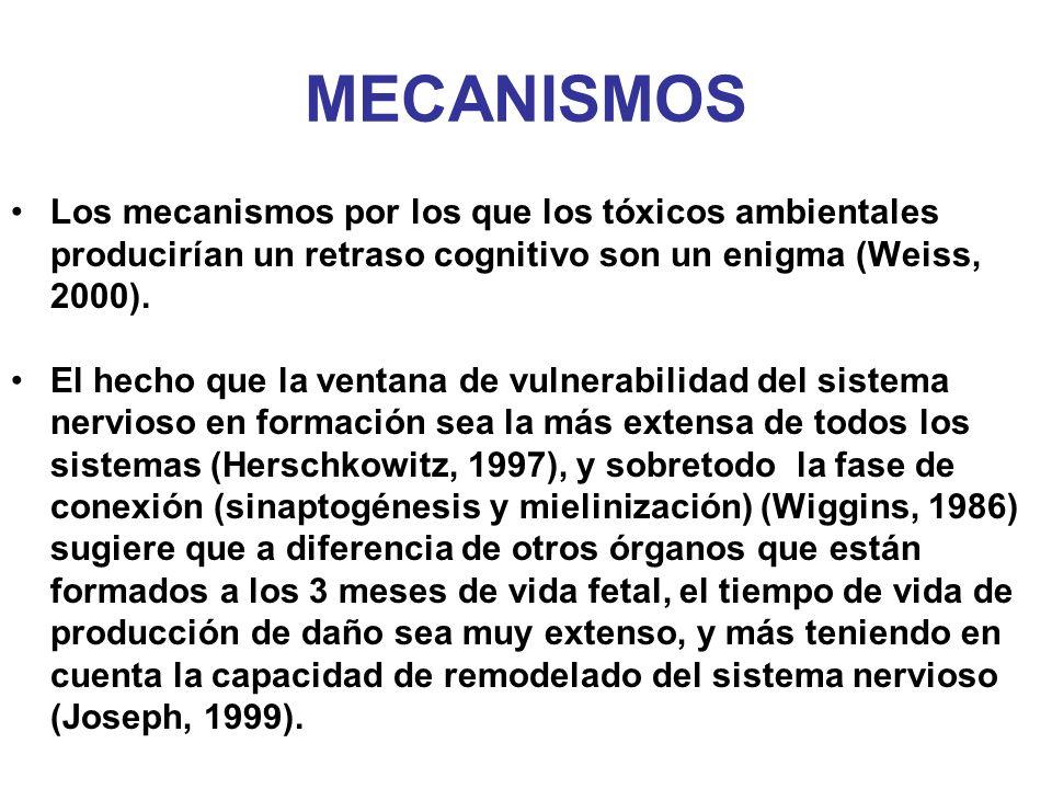 MECANISMOS Los mecanismos por los que los tóxicos ambientales producirían un retraso cognitivo son un enigma (Weiss, 2000).