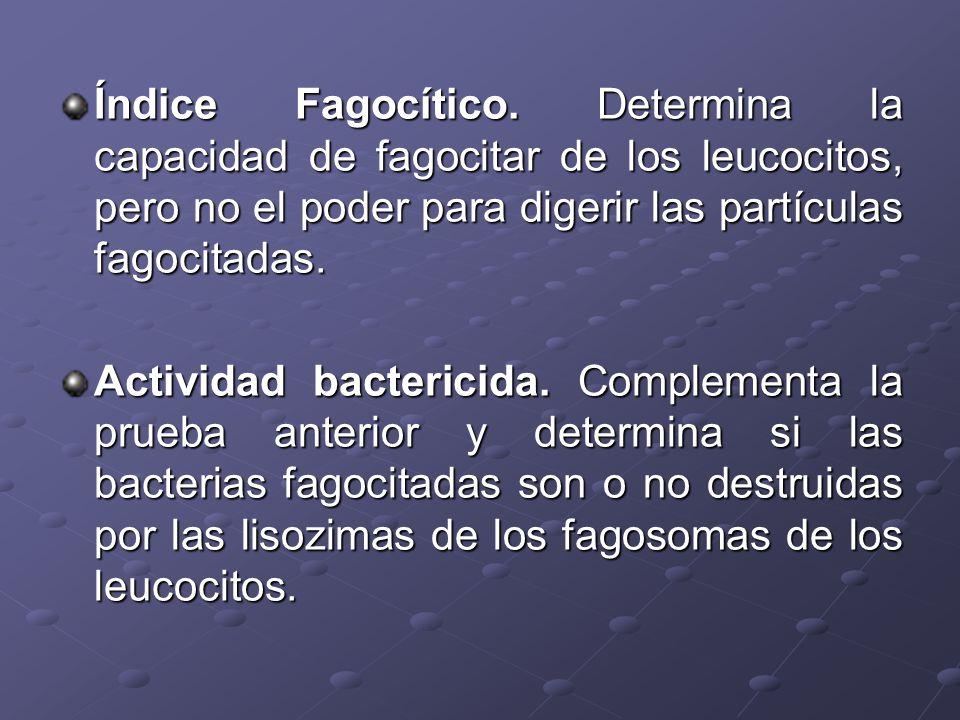 Índice Fagocítico. Determina la capacidad de fagocitar de los leucocitos, pero no el poder para digerir las partículas fagocitadas.