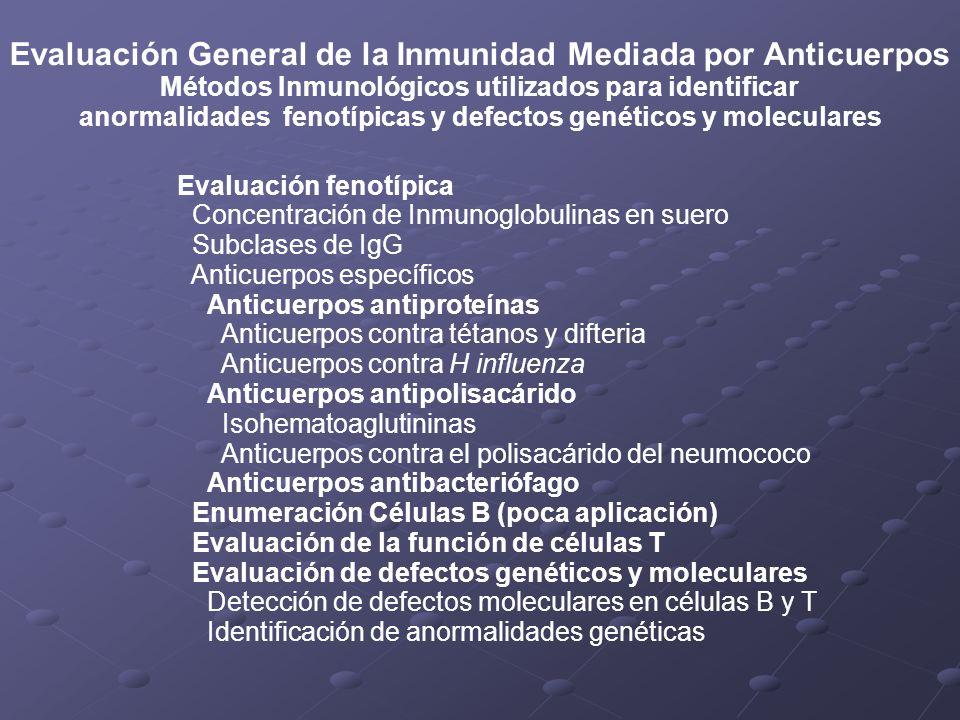 Evaluación General de la Inmunidad Mediada por Anticuerpos