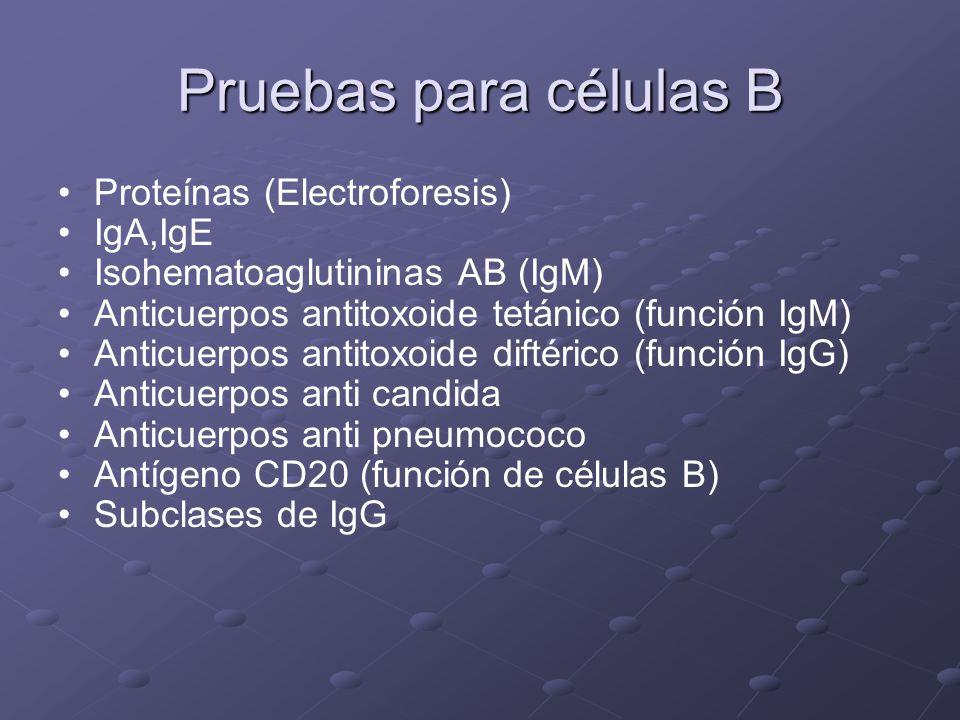 Pruebas para células B Proteínas (Electroforesis) IgA,IgE
