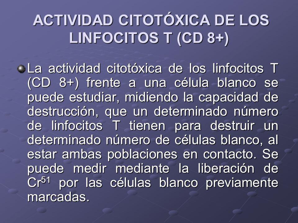 ACTIVIDAD CITOTÓXICA DE LOS LINFOCITOS T (CD 8+)