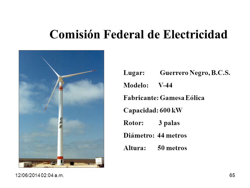 Comisión Federal de Electricidad