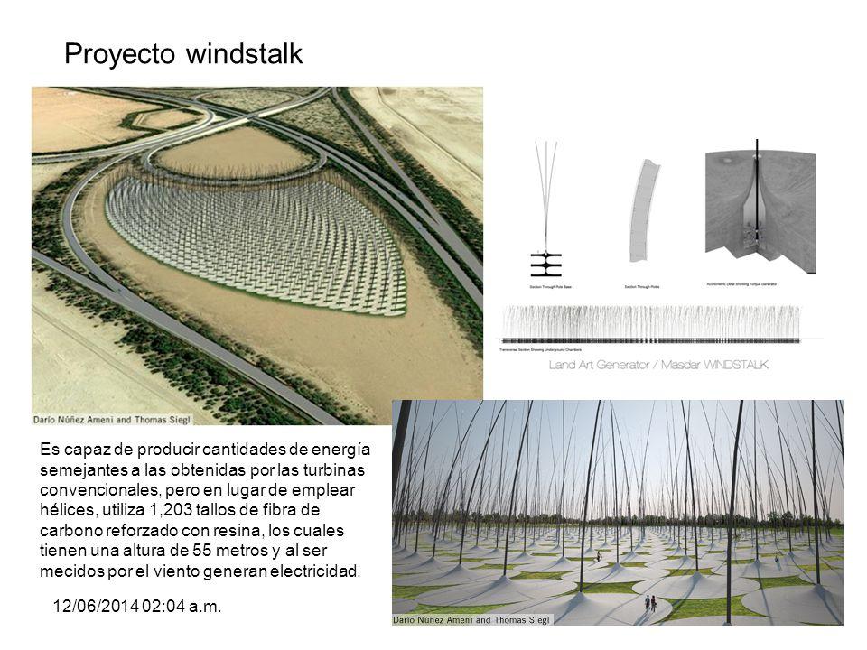 Proyecto windstalk