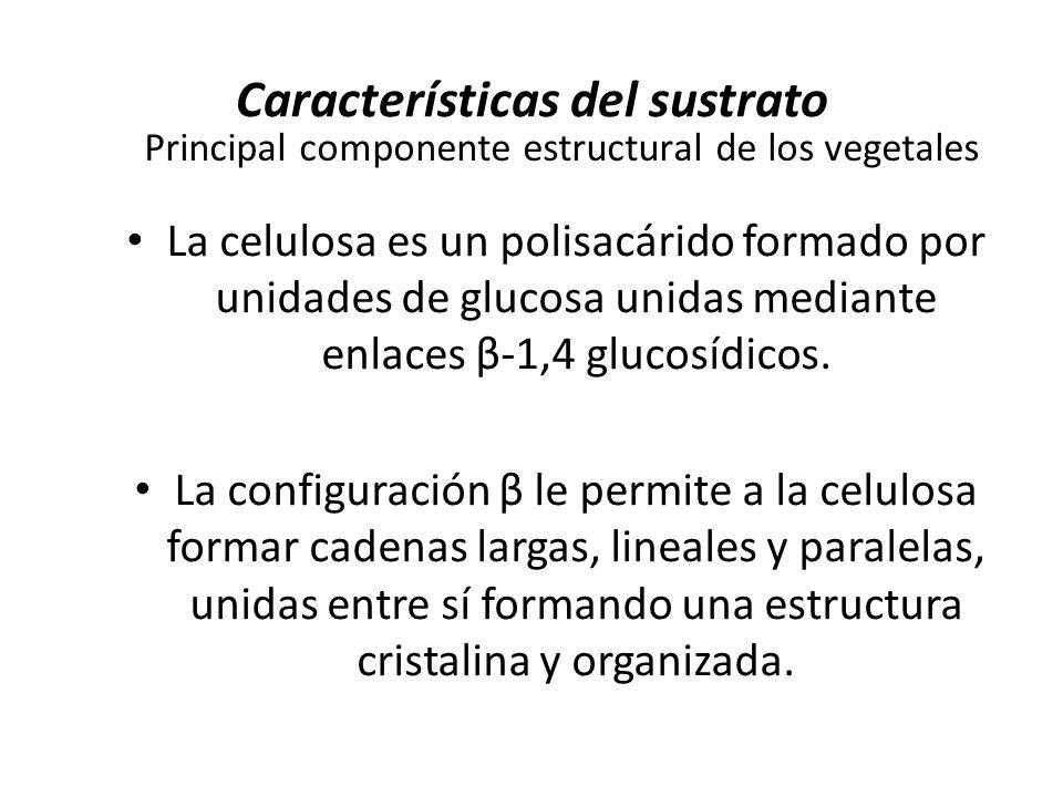 Características del sustrato