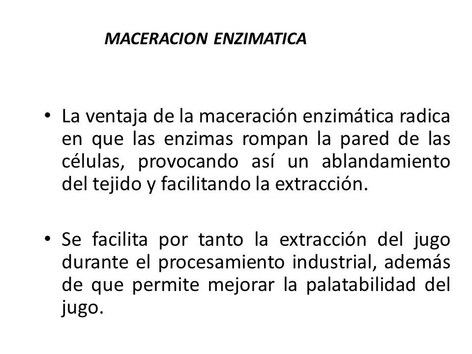 MACERACION ENZIMATICA
