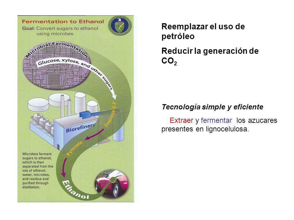 Reemplazar el uso de petróleo Reducir la generación de CO2