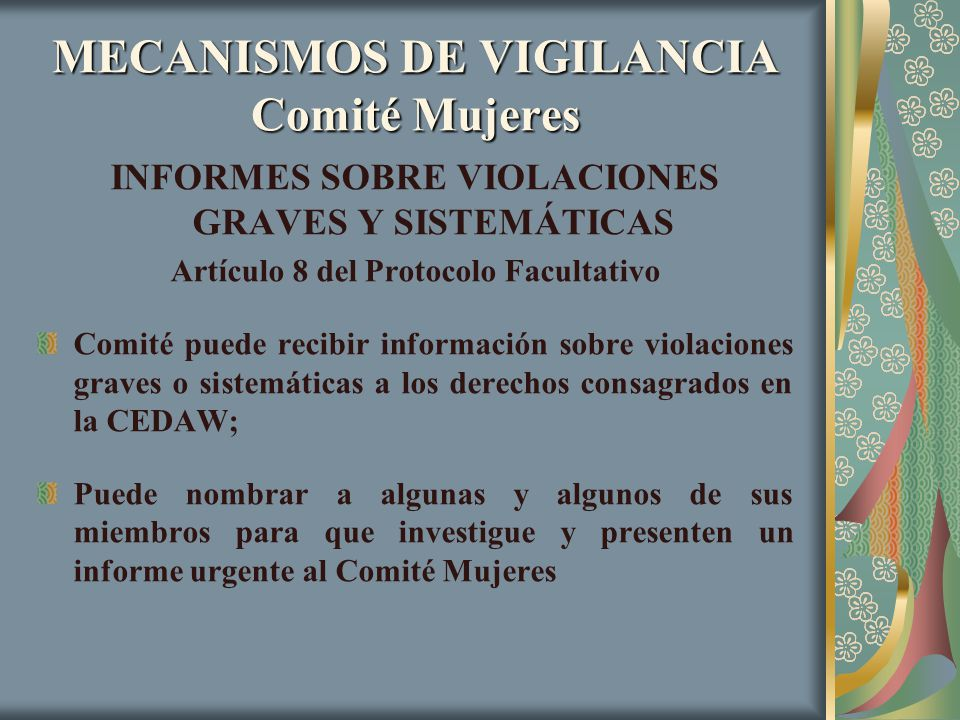 MECANISMOS DE VIGILANCIA Comité Mujeres