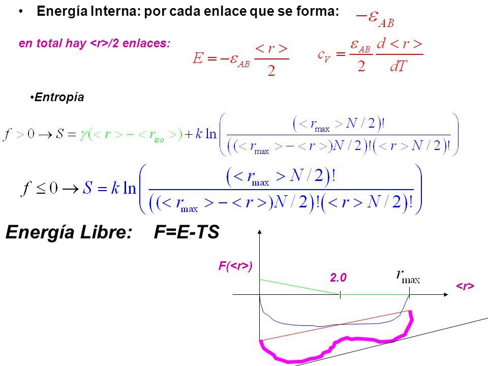 Energía Libre: F=E-TS Energía Interna: por cada enlace que se forma: