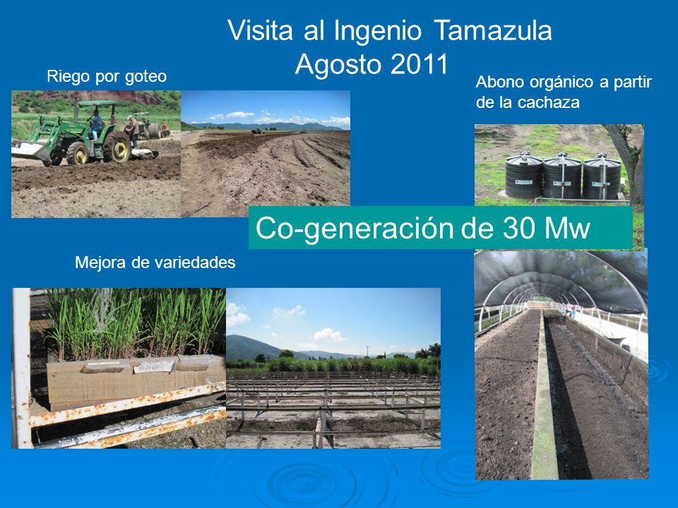 Co-generación de 30 Mw Visita al Ingenio Tamazula Agosto 2011