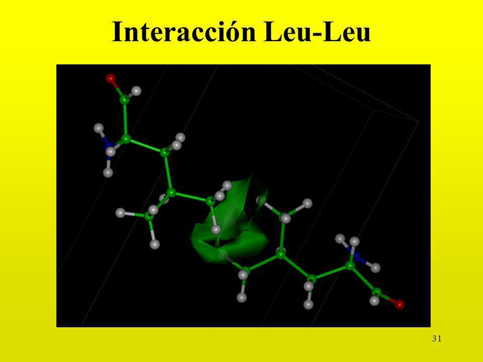 Interacción Leu-Leu