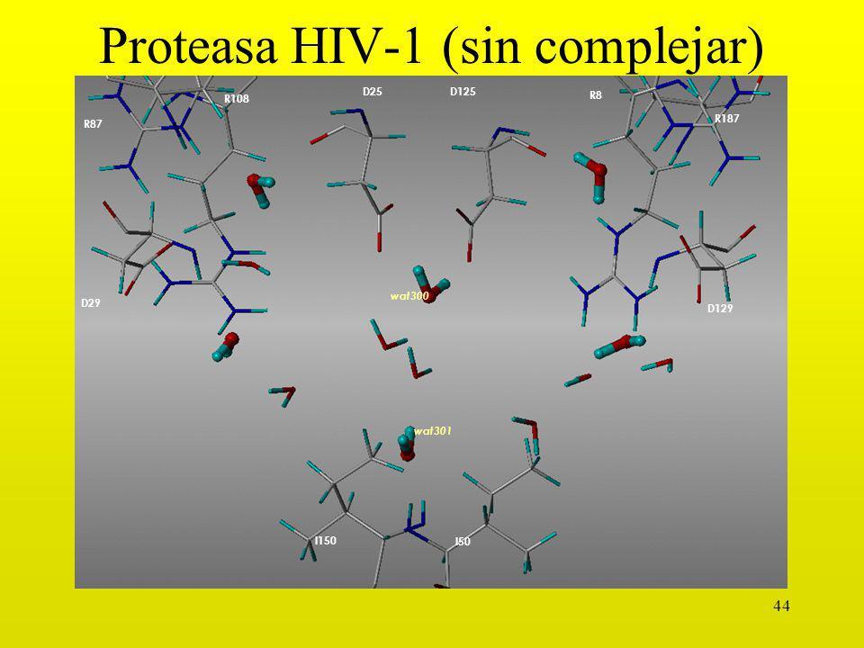 Proteasa HIV-1 (sin complejar)