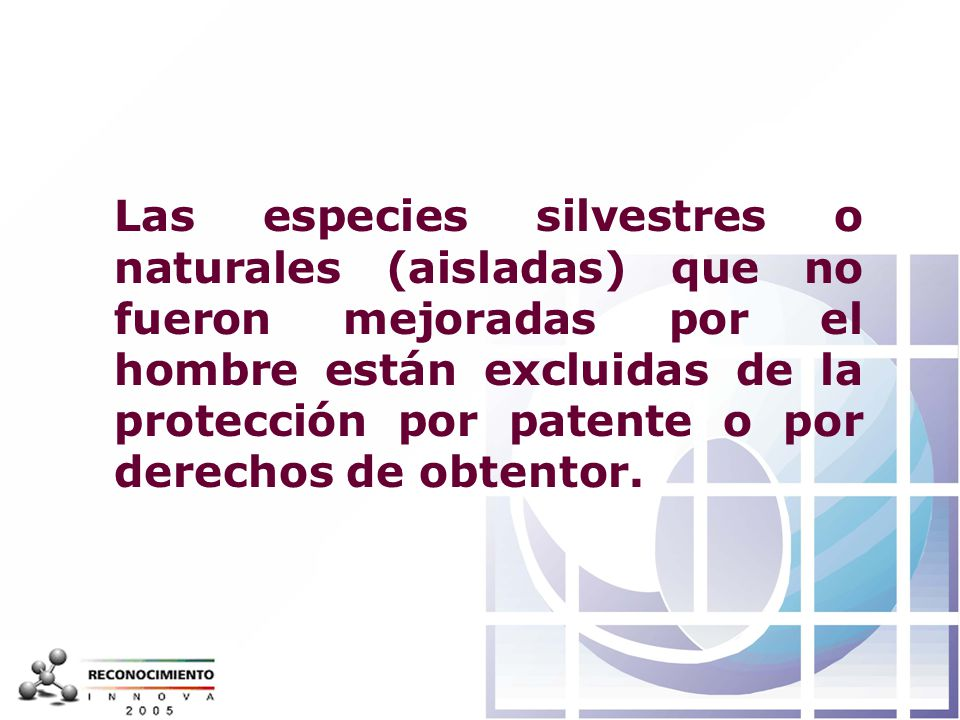 Las especies silvestres o naturales (aisladas) que no fueron mejoradas por el hombre están excluidas de la protección por patente o por derechos de obtentor.