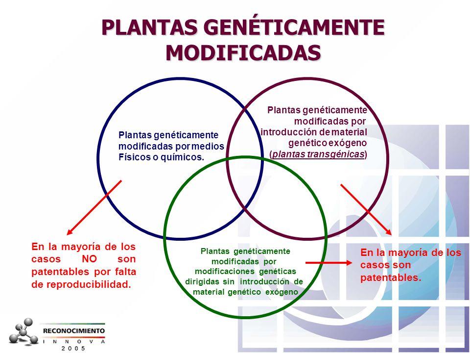PLANTAS GENÉTICAMENTE MODIFICADAS