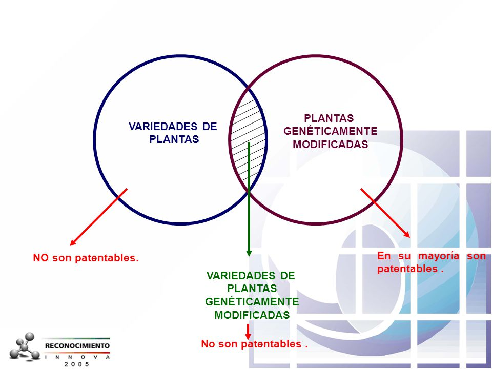 PLANTAS GENÉTICAMENTE. MODIFICADAS. VARIEDADES DE. PLANTAS. NO son patentables. En su mayoría son patentables .