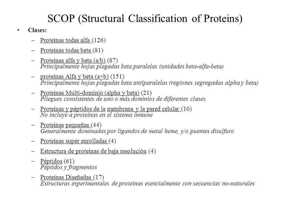SCOP (Structural Classification of Proteins)