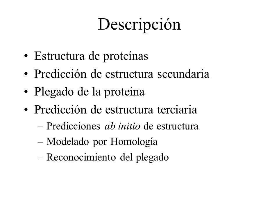 Descripción Estructura de proteínas