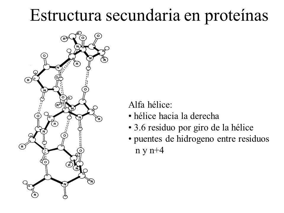 Estructura secundaria en proteínas