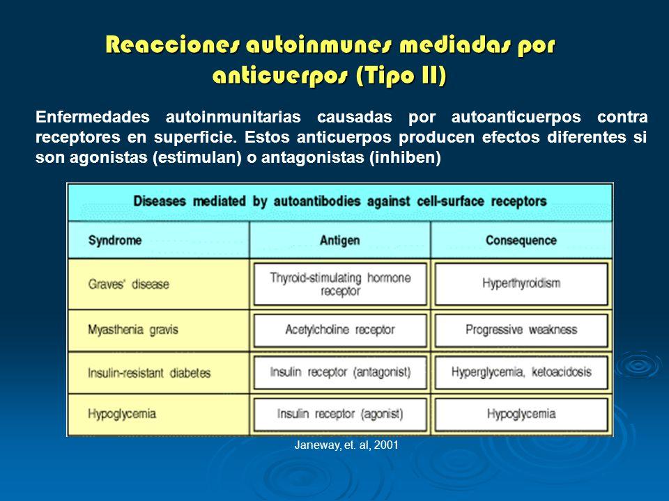 Reacciones autoinmunes mediadas por anticuerpos (Tipo II)