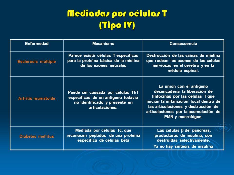 Mediadas por células T (Tipo IV)
