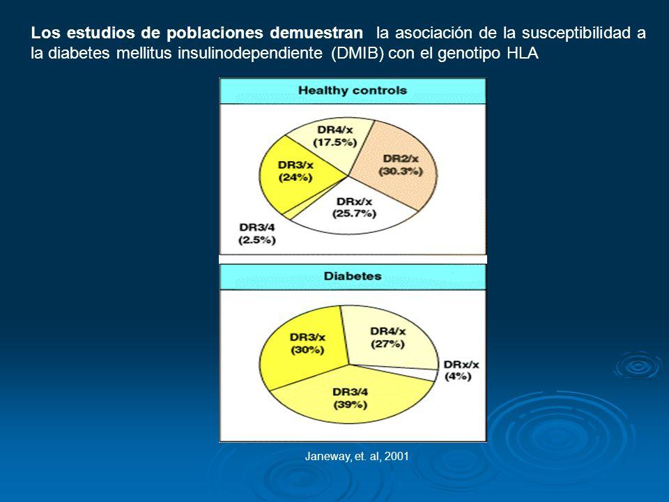 Los estudios de poblaciones demuestran la asociación de la susceptibilidad a la diabetes mellitus insulinodependiente (DMIB) con el genotipo HLA