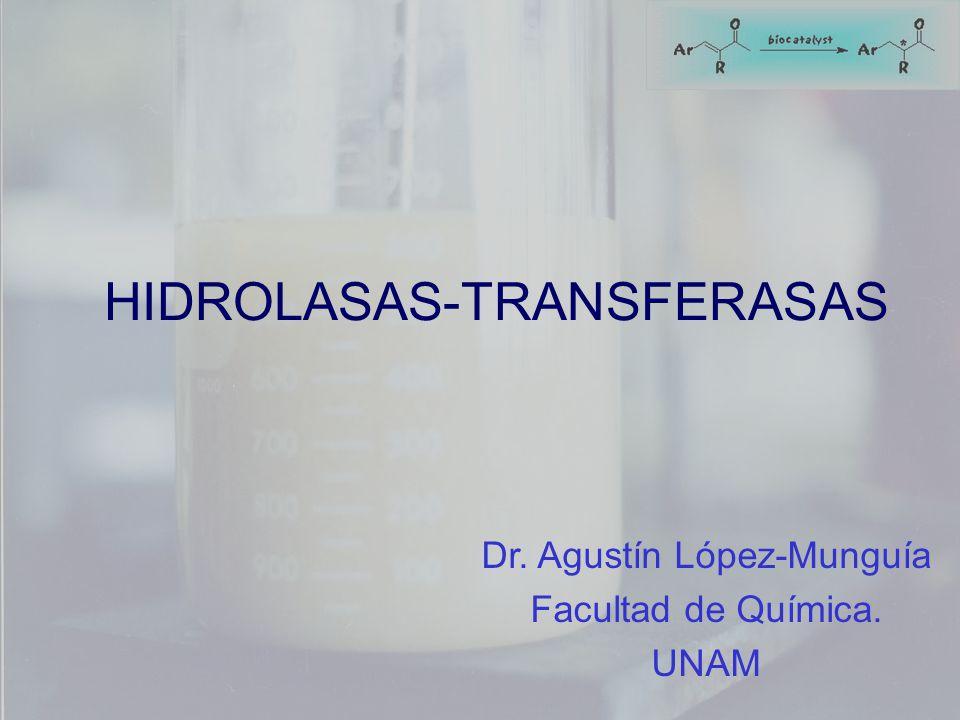 HIDROLASAS-TRANSFERASAS