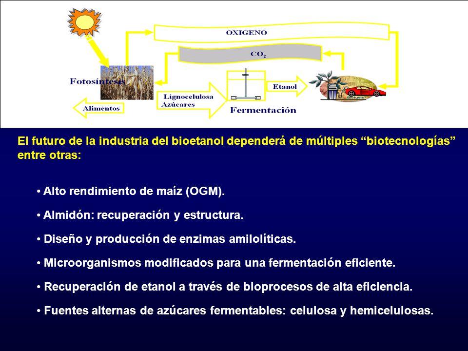 El futuro de la industria del bioetanol dependerá de múltiples biotecnologías entre otras: