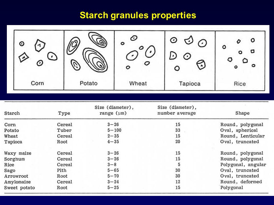 Starch granules properties