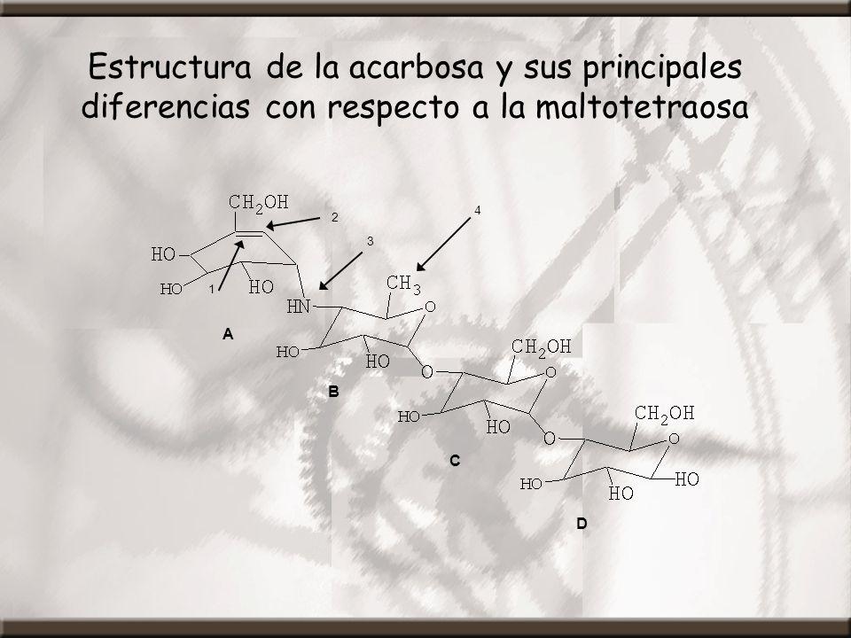 Estructura de la acarbosa y sus principales diferencias con respecto a la maltotetraosa