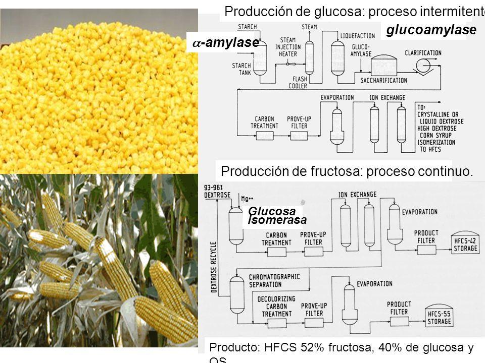 Producción de glucosa: proceso intermitente. glucoamylase a-amylase