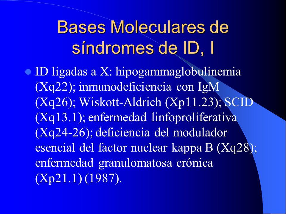 Bases Moleculares de síndromes de ID, I