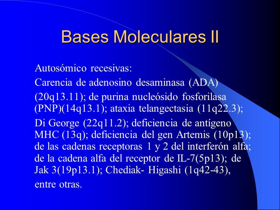 Bases Moleculares II Autosómico recesivas: