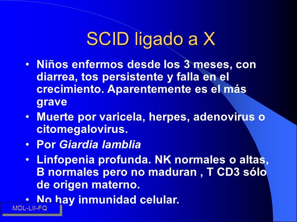 SCID ligado a X Niños enfermos desde los 3 meses, con diarrea, tos persistente y falla en el crecimiento. Aparentemente es el más grave.