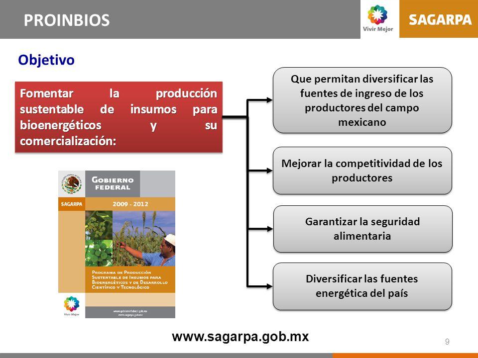 PROINBIOS Líneas Estratégicas Desarrollo de sistema de información.