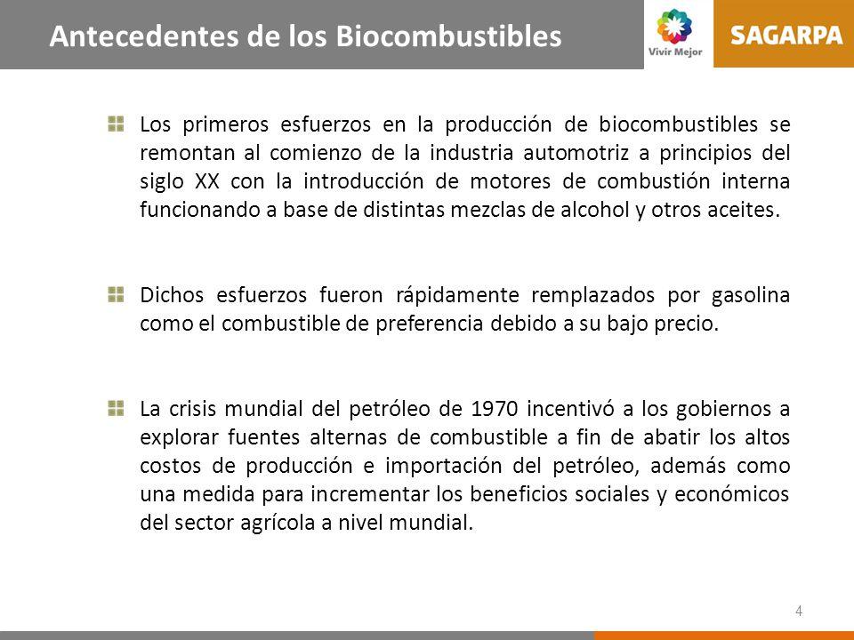 Experiencia Internacional en Biocombustibles