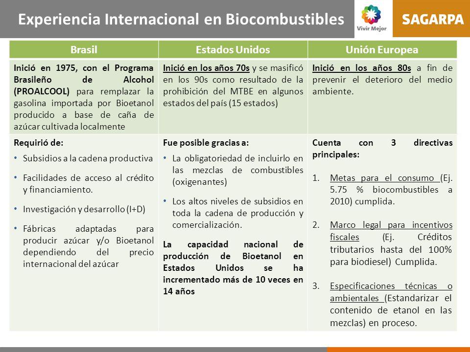 Comercio Internacional de Biocombustibles