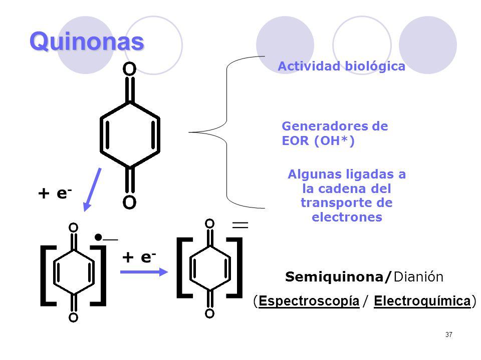 Algunas ligadas a la cadena del transporte de electrones