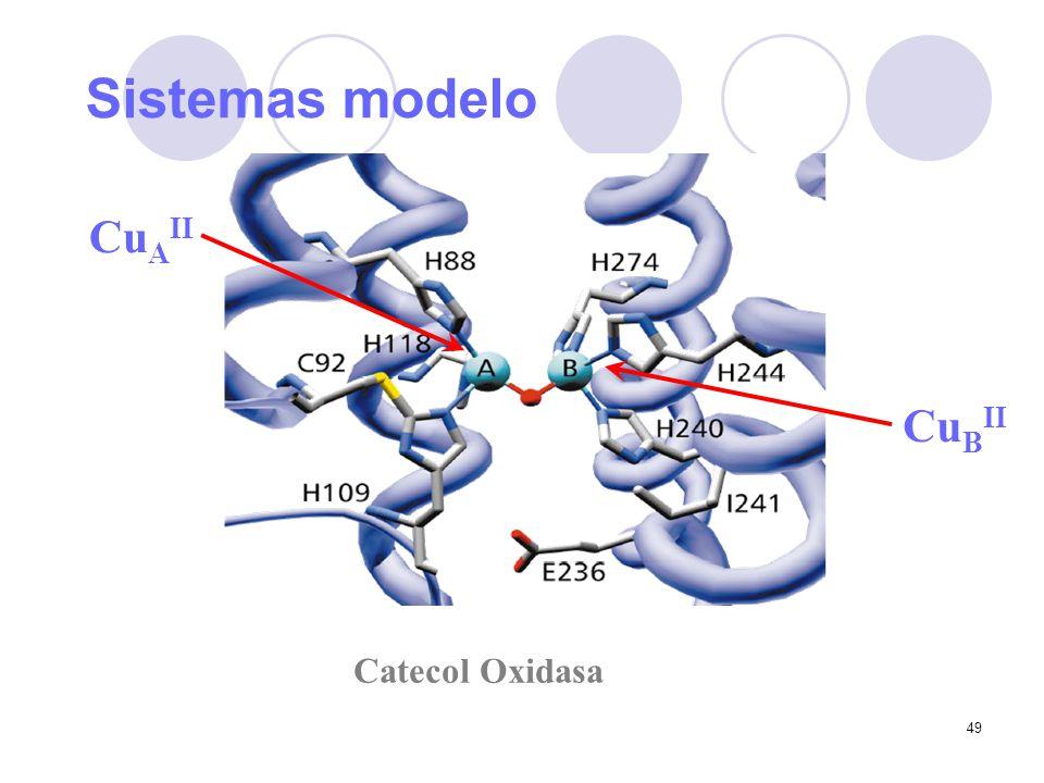 Sistemas modelo Catecol Oxidasa CuAII CuBII