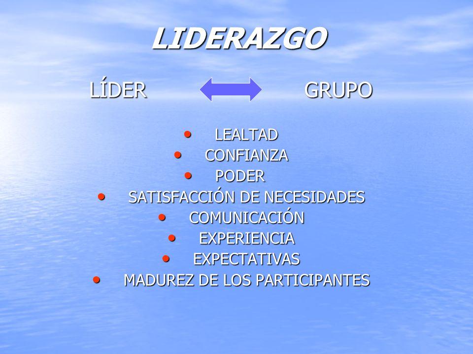 LIDERAZGO LÍDER GRUPO LEALTAD CONFIANZA PODER