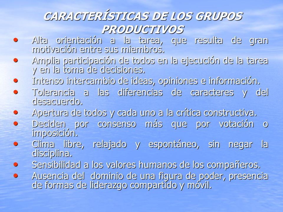 CARACTERÍSTICAS DE LOS GRUPOS PRODUCTIVOS