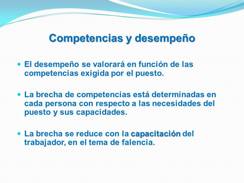 Competencias y desempeño